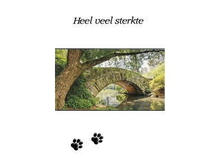 04_kaart_dierengedenkshop