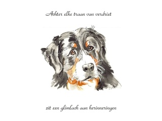 14_kaart_dierengedenkshop